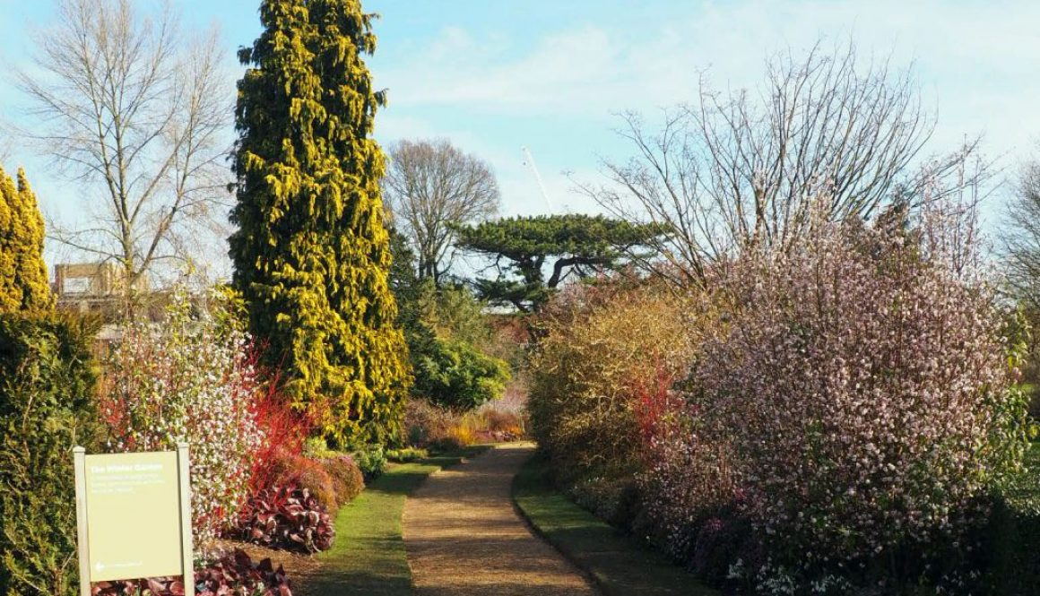 Cambridge Botanic Gardens